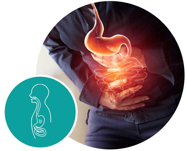 ventrisana stomach care